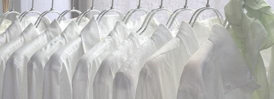 para simage-shirts-1024x373-1024x373-002.jpg